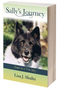 Sally's Journey by Lisa Shultz